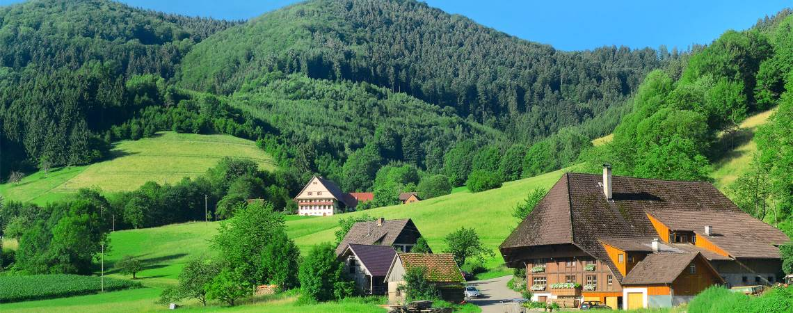 Urlaub Schwarzwald